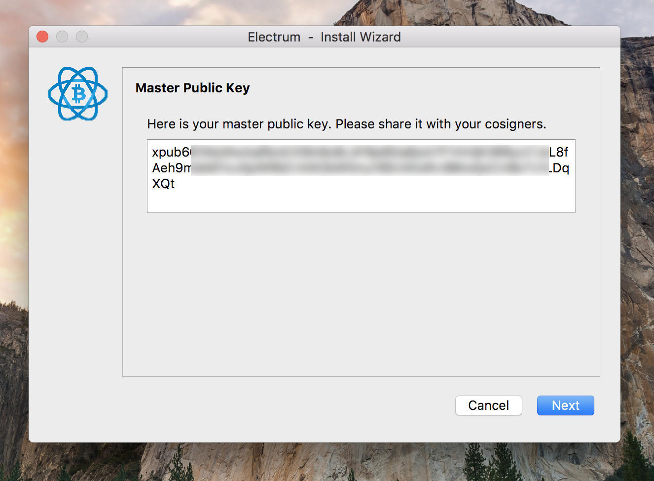 A master public key (XPUB) of the multisig wallet.